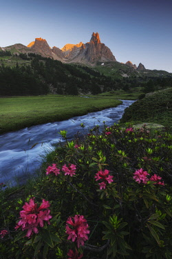 FRA11817AW Alpine meadows during a summer sunrise, Val Claree, Southern France