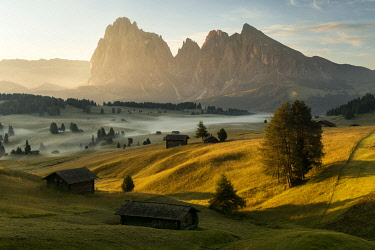 ITA15248AW Summer sunrise at the Alpe di Siusi (Seiser Alm) in the Dolomites, Italy
