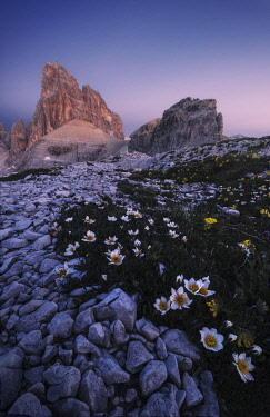ITA15258AW Twilight over the Croda dei Toni in summer, Dolomites, Italy