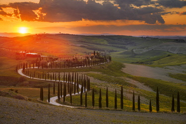 ITA15288AW Podere Baccoleno during a spring sunset, Tuscany, Italy