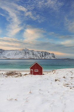 NOR1188AW Lone cabin overlooking the fjord in the Lofoten islands, Norway