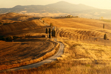 ITA15326AW Podere Terrapille (The Gladiator's House) during a summer sunset, Val d'Orcia, Tuscany, Italy