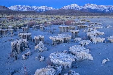 USA15326AW Sand Tufas, Mono Lake, Eastern Sierra,California,USA