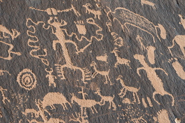 US45JZI0573 USA, Utah. Ancient petroglyphs, Newspaper Rock, Indian Creek Canyon, Bears Ears National Monument.