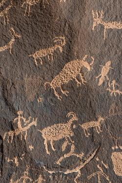 US45JZI0574 USA, Utah. Ancient petroglyphs, Newspaper Rock, Indian Creek Canyon, Bears Ears National Monument.