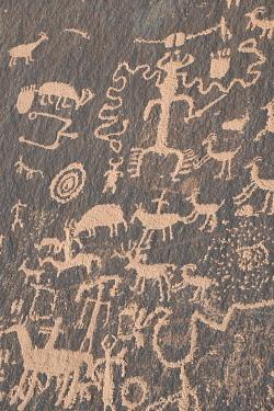 US45JZI0503 USA, Utah. Ancient petroglyphs, Newspaper Rock, Indian Creek Canyon, Bears Ears National Monument.