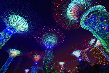IBLNEX05135521 Supertrees at night, in the back Marina Bay Sands Hotel, Supertree Grove, Gardens by the Bay, Singapore, Asia