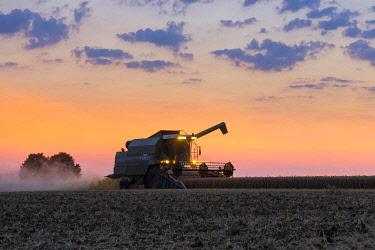 IBLTKE05124155 Combine harvester during the evening grain harvest, Baden-Wurttemberg, Germany, Europe