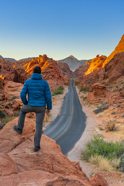 USA15349AW Man standing above straight road between red rocks at sunrise (MR), Valley of Fire State Park, Nevada, Western United States, USA