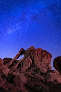 USA15361AW Milky way above Elephant rock formation, Valley of Fire State Park, Nevada, Western United States, USA