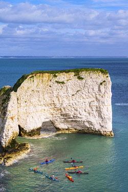 ENG16681AW Old Harrys Rocks, Studlands, Jurassic Coast, Dorset, England, UK