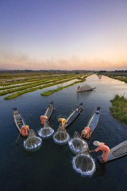 High angle of five traditional fishermen fishing together using conical nets, Lake Inle, Nyaungshwe Township, Taunggyi District, Shan State, Myanmar