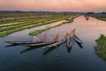 MYA2589AW Elevated view of five leg-rowing fishermen rowing on Lake Inle before sunset, Lake Inle, Nyaungshwe Township, Taunggyi District, Shan State, Myanmar