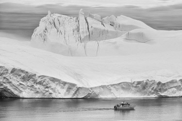 GRN1438 Tour boat sailing into the Kangia Ice fiord
