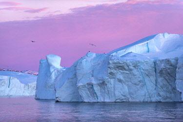 GRN1469 Sun setting on icebergs in the Kangia Icefiord, Ilulissat