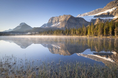 CAN3611AW Misty morning at Bow Lake in the Canadian Rockies, Alberta, Canada