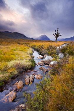 SCO35658AW Stream running through Rannoch Moor wilderness, Highland, Scotland
