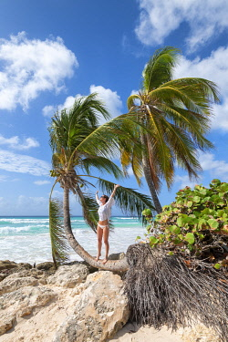 CLKAB129466 Happy woman on the curved palm tree, Dover Beach, Oistins, Barbados Island, Lesser Antilles, West Indies