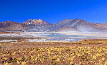 CLKNO122508 Altiplanic Lagoons (Lagunas Altiplanicas), Reserva Nacional de Los Flamencos, Salar de Atacama,  Antofagasta, Chile