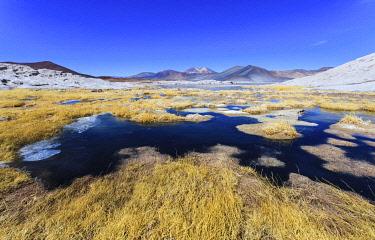CLKNO122511 Altiplanic Lagoons (Lagunas Altiplanicas), Reserva Nacional de Los Flamencos, Salar de Atacama,  Antofagasta, Chile