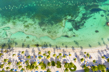 CLKVV129044 Palm-fringed beach washed by Caribbean Sea from above by drone, St. James Bay, Antigua, Leeward Islands, West Indies,