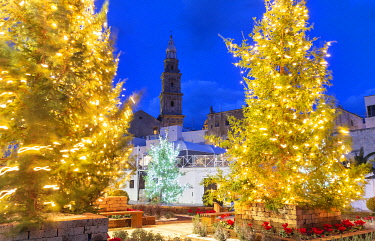 CLKFB124694 Christmas trees in the old town of Monopoli with view on the tower bell of the cathedral, Apulia, Italy