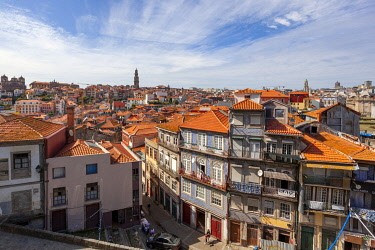 CLKDC124531 Overview of the old town of Porto, with Cl��rigos tower on the background, from the terrace of Porto Cathedral, Porto, Porto district, Norte Region, Portugal