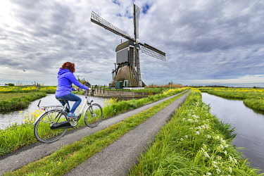 CLKGP123020 By bike to the windmills of Broekmolen (Molenlanden municipality, South Holland, Netherlands) (MR)