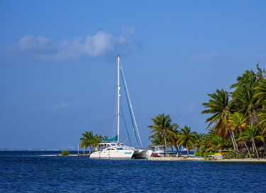 CYI1043AW Catamaran at North Side, Grand Cayman, Cayman Islands