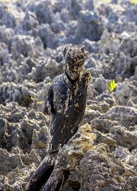CYI1091AW Devil Figure in Hell, West Bay, Grand Cayman, Cayman Islands