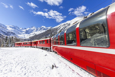 CLKFB126536 Transit of Bernina Express train at Montebello curve with view on Morterasch glacier , Canton of Graubunden, Switzerland