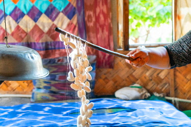CLKGM128370 Yodgorlik silk factory in Margilan, Fergana region, Uzbekistan