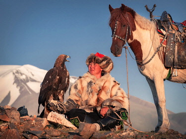 IBLBAY05238790 Mongolian eagle hunter, Kazakh with trained eagle in front of mountains, Bajan-Olgii province, Mongolia, Asia
