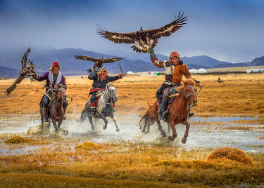 IBLBAY05238808 Mongolian eagle hunter, three Kazakhs on horseback with trained eagles, Bajan-Olgii province, Mongolia, Asia