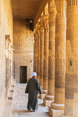 EGY1665AW Guradian at the Temple of Philae on an island in Lake Nasser, Nile River, Aswan, Egypt, Africa