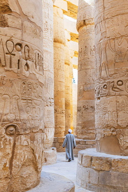 EGY1706AW Guardian at the Karnak Temple, Luxor, Egypt, Africa
