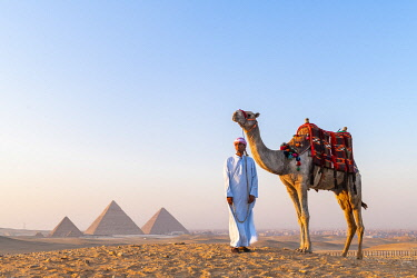 EGY1753AW Man and his camel at the  Pyramids of Giza, Giza, Cairo, Egypt