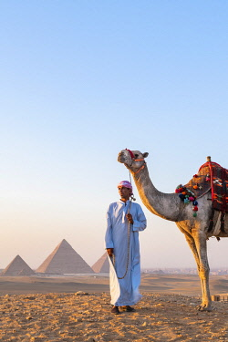 EGY1754AW Man and his camel at the  Pyramids of Giza, Giza, Cairo, Egypt