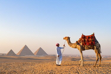 EGY1757AW Man and his camel at the  Pyramids of Giza, Giza, Cairo, Egypt