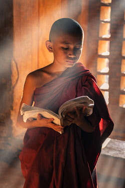 MYA2618AW A young monk reading by a window inside a temple, UNESCO, Bagan, Mandalay Region, Myanmar