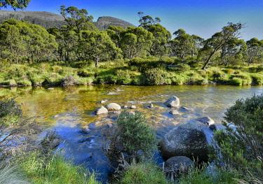 AUS4203AW The fresh waters of the Thredbo River. Kosciuszko National Park, Snowy Mountains, New South Wales, Australia