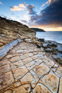 AUS4233AW Tesselated patterns in sandstone rock on Bouddi coastal walk. Bouddi National Park, Central Coast, New South Wales, Australia