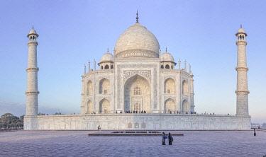 IN08585 Taj Mahal, Agra, Uttar Pradesh, India