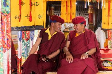 IND8614 India, Tso Moriri, Korzok Gustor Festival, Buddhist monks in conversation