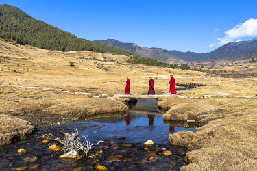 BHU1908AW Novice Monks (Child Monks) crossing a river in Phobjikha Valley, Bhutan
