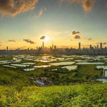 CH12444AWRF Skyline of Shenzhen from Sheung Shui at sunset, New Territories, Hong Kong
