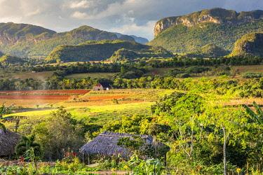 CUB2560AW Vinales Valley, Pinar del Rio Province, Cuba