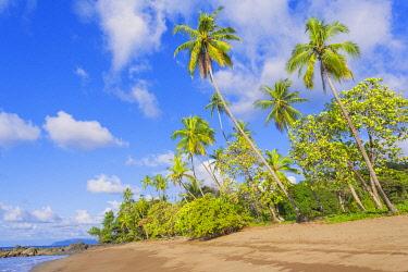 CR33295AWRF Sandy beach, Drake Bay, Corcovado National Park, Osa Peninsula, Costa Rica