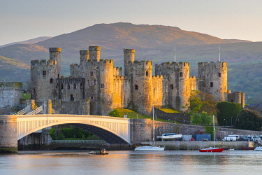 WAL7769AW Majestic ruins of Conwy Castle in evening light, Snowdonia National Park, Wales, UK. Spring