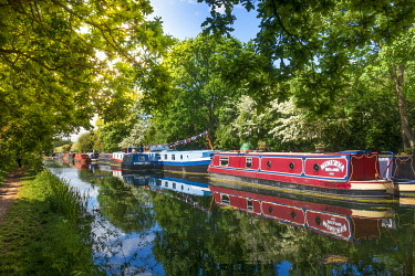 ENG17279AW United Kingdom, England, London, Grand Union Canal. Canal boats moored near Wembley